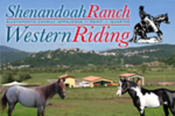 Shenandoah Ranch Western Riding