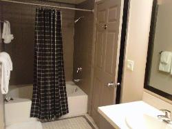 bathroom with large tub/shower