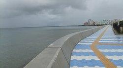 Miyagi Coast
