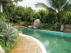 Pool wrapping around the side of Lamu villa 1