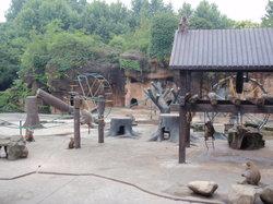 Shanghai Zoo (Shanghai Dongwu Yuan)