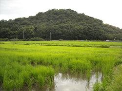 Yamato Sanzan