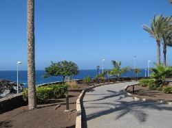 Hotel Riu Buena Vista Tenerife