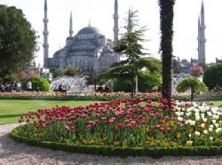 Curio Travel Istanbul (27210236)