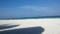 Omni Beach