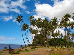 Kapuaiwa Coconut Grove / Kiowea Park