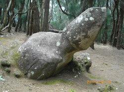 Phallic Rock (Ka Ule o Nanahoa)
