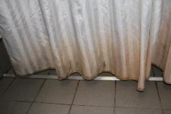 Der verschimmelte Vorhang