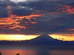 Alaska Log Haven B&B