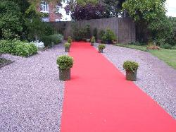 red carpet where the bride and bridesmaid walked on to the pavillion