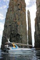 Sealife Experience Tasmania