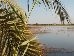Lake Siwa