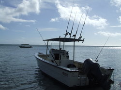 Sport Fishing Fiji