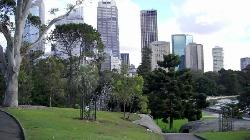 View of Sydney from Botanical Gardens (28203085)