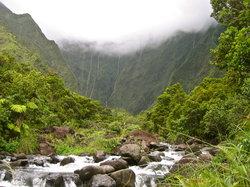 Quantum Aloha Adventures