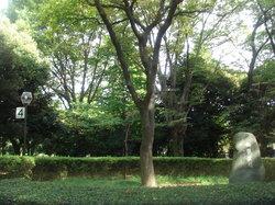 Taman Meiji Jingu Gaien