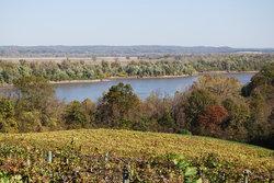Hermann Wine Trail