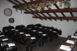 Producers Of the Traditional Balsamic Vinegar of Modena