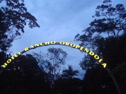 Rancho Oropendola