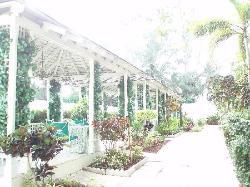 Garden of Eden outside seating area