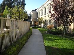 Path between hotel and pool