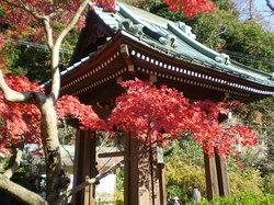 Kaizoji Temple