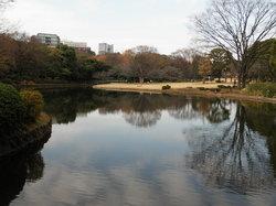 키타노마루 공원