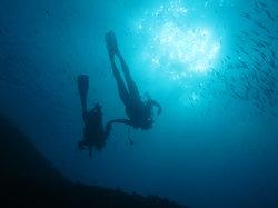 Plongée Phocéenne