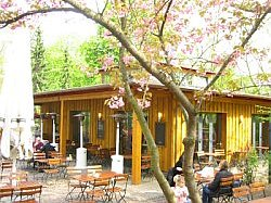 Brachvogel Restaurant