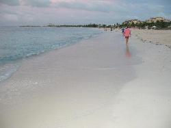 amazing walking beach
