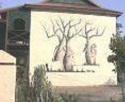 Kimberley Croc Motel