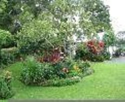 Wairoa Valley Bed and Breakfast