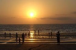 Darwin, Northern Territory (29297621)