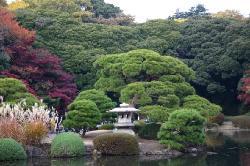 Tokio (29344153)