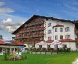 Alpejski Hotel