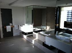 Massive bathroom with TV