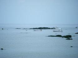 Pulau Hegura