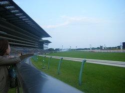 สนามเเข่งม้าโตเกียว