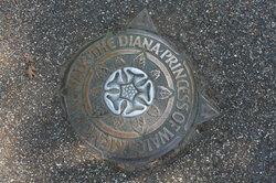 戴安娜王妃倫敦足蹟之旅