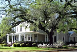 Freedom Oaks B&B