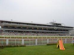 Hakodate Horse Racetrack