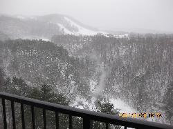 部屋からスキー場を望む
