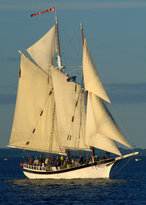 Tall Ship Manitou - Day Tours
