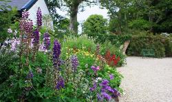 Ireland: County Donegal - Glebe House gardens