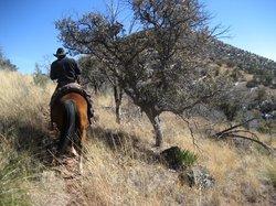 Arizona Horseback Experience