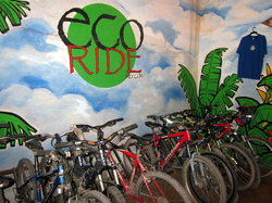 Eco Ride Mountain Bike & Hiking Tours