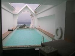 メゾネットの部屋プールです。