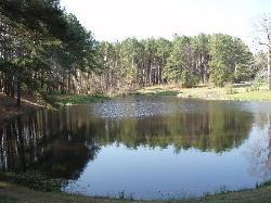 Fishing Pond at entrance