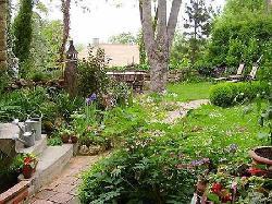 Garten (Aussicht der Wohlfühloase)
