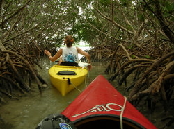 Blue Planet Kayak Eco-Tours